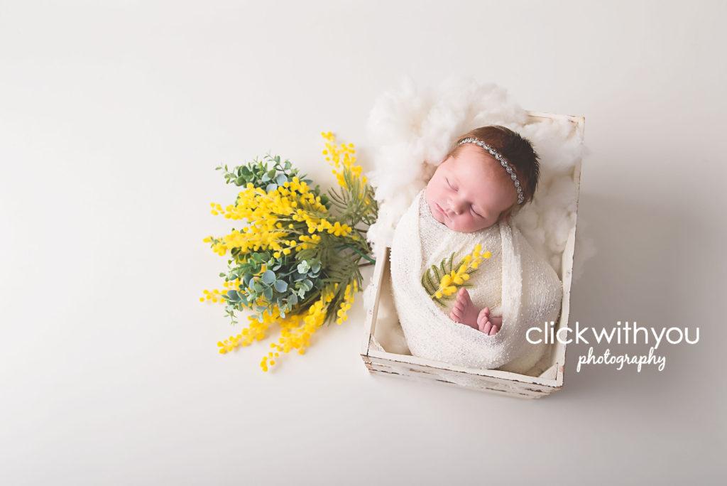 newborn photoshoot brisbane